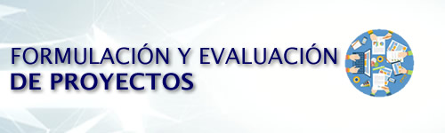 Formulación y Evaluación de Proyectos (8P)