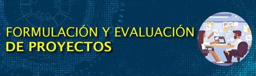 Formulación y Evaluación de Proyectos (8PP)